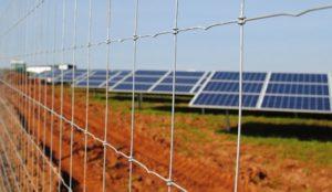 Tornado wire Solar-farm-fencing-5-556x323