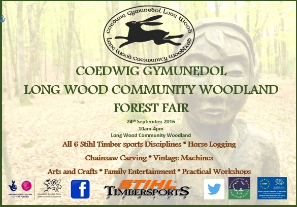 long-wood-community-fair-2016